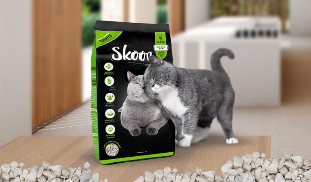 Skoon experto en gatos