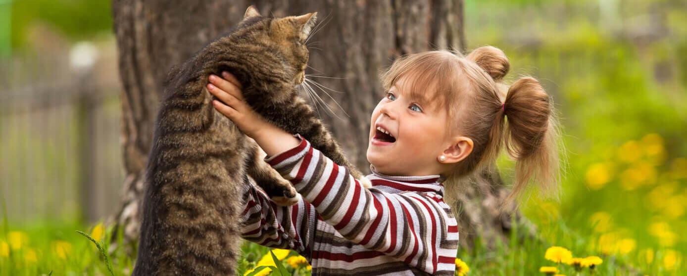 5 divertidos juegos para gato que lo harán sentirse amado