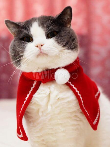 capa de navidad para gato
