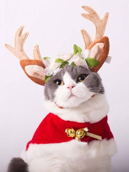 disfraces para gatos con cuernos de reno