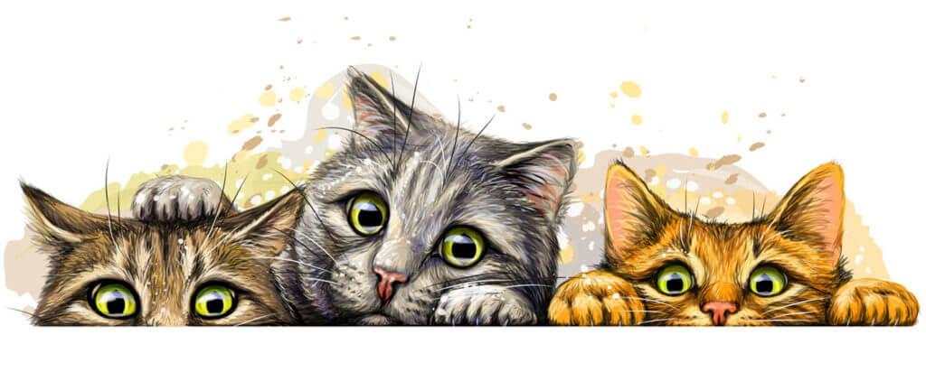 día del gato celebración 22 de febrero