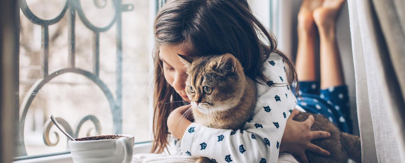 día mundial de abrazar a tu gato