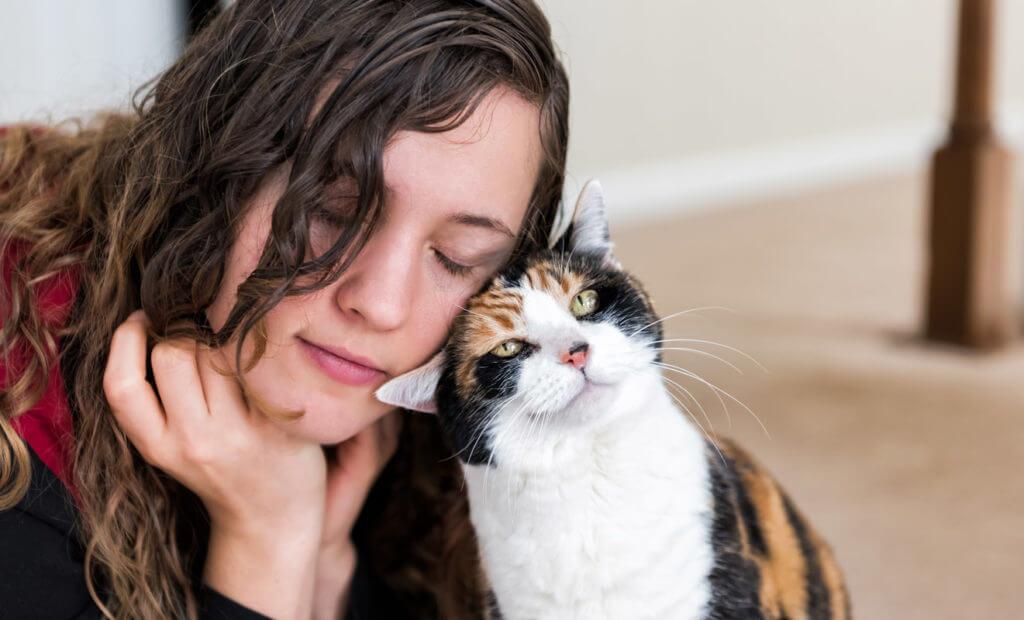 comportamientos únicos de gatos