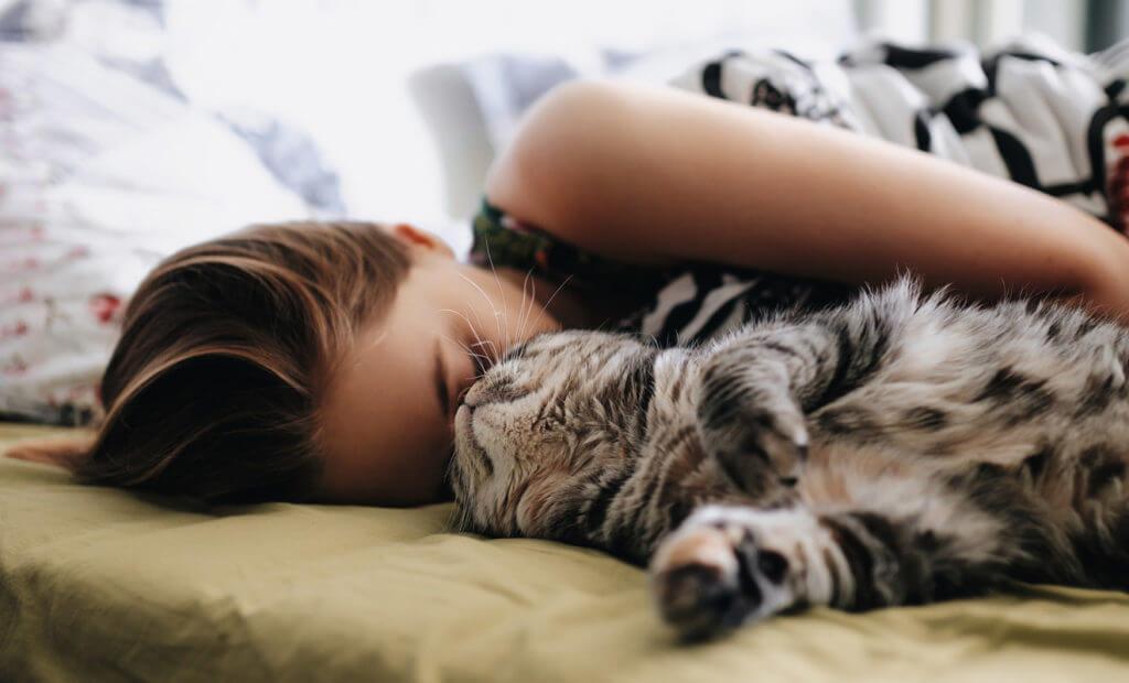 abrazar a tu gato mientras duermes