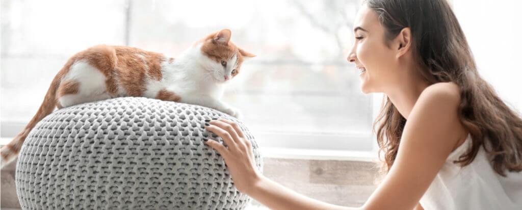 Gato con dueño feliz