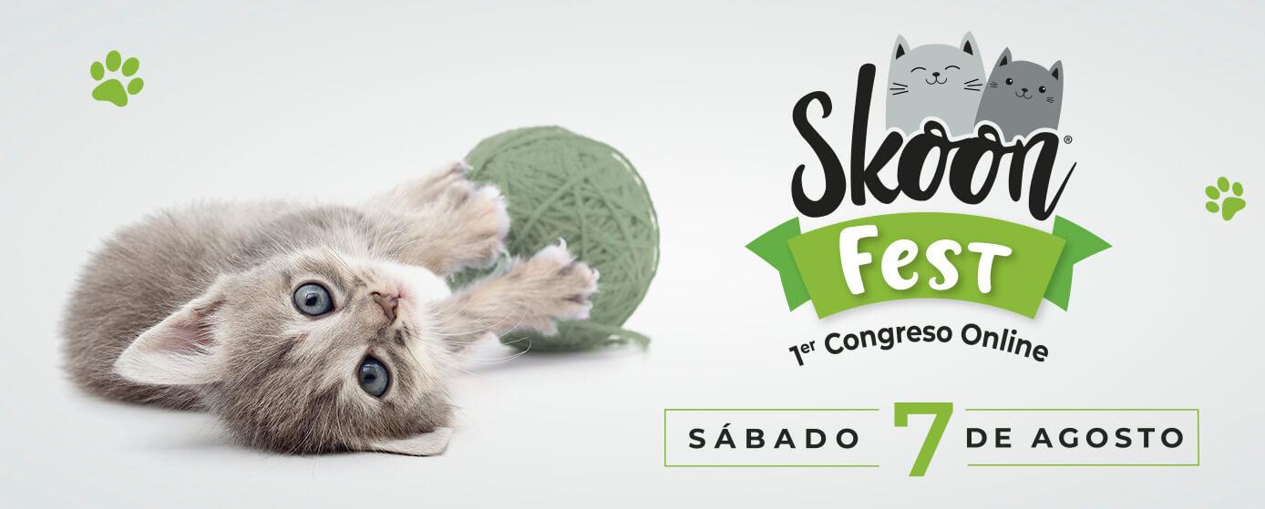 ¡Regístrate en el Skoon® Fest, primer congreso online!